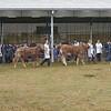Limousin Grand Prix