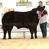 The reserve beef champion, Limousin cross Jimmy from S. Warriner and M. Harryman.