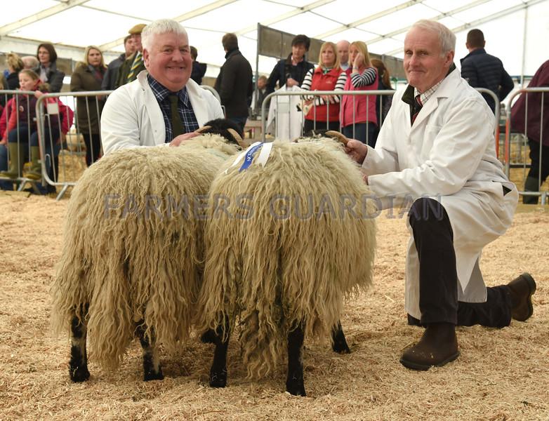CSL Native long wool res