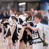 Dairy Expo010