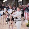 Dairy Expo009