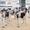 Dairy Expo011