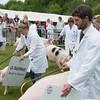 Judging pigs at Devon Show.