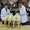 EWF Lamb pairs