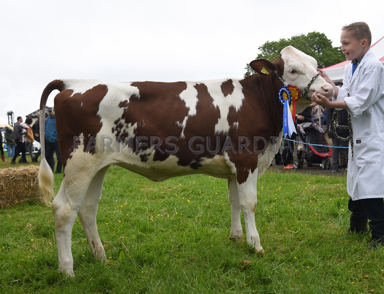 G Harwood res Dairy