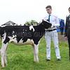 G Harwood Dairy
