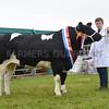 G Harwood Beef champ