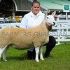 North Country Cheviot and Reserve supreme champion a Shearling ewe from Clare Guy.
