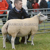 Beltex and Sheep Interbreed Champion at Kirriemuir Show from Ian Reid, Methven.
