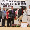 The senior champion, Saxilby Goldwyn Rose from R. and E. Butterfield. from A. and J. E. Smith (L-R) Ian Wozencroft from New Breed UK, Robert and Elaine Butterfield, judge Iwan Rhys Morgan, and Andrew Holliday.