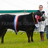 Commercial champion Rio from Neil Slack.