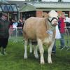 Notts beef judge