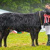 Inter-breed beef champion from Neil Slack