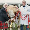 "Provost Dennis Melloy seen presenting The Angus Howie Memorial Trophy at Perth Show to David Craig and his Show Champion ""Kennox Tara's Gem."