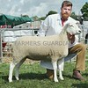 Lleyn  Champion at Perth Show from Hugh Gillan, Drumcarrow Farm,Peat Inn, Cupar