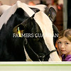 Kate Jones from Gorey, County Wexford with Bordermist Sanchez Fran from Hallow Holsteins. Photograph: Columba O'Hare/ Newry.ie