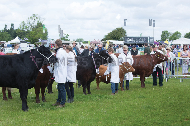 Rutland County Show 2017<br /> Picture Tim Scrivener 07850 303986<br /> ….covering agriculture in the UK….
