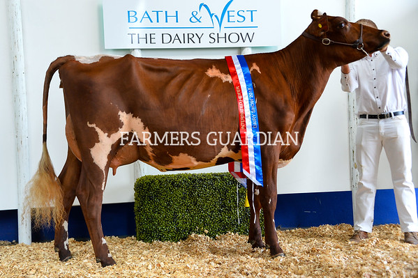 The Dairy Show October 2018