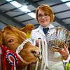 Jennifer Hyslop with heifer and supreme champion Sassy Lassy.