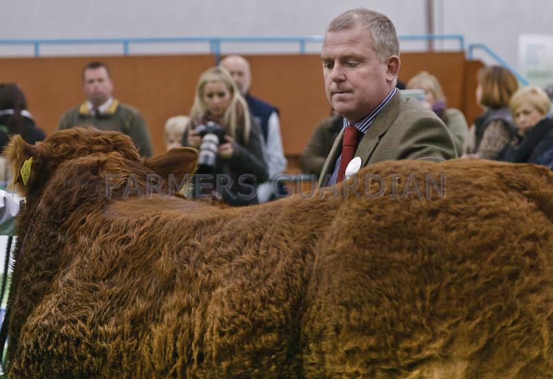 Stars of the Future  13. Overall Championship Judge Arwel Owen,Tynewydd, Garthbeibio,Welshpool,Powys.