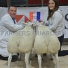 THAINSTONE CLASSIC 15 OVERALL SHEEP CHAMPIONS FROM CALUM ANGUS