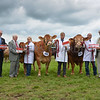 The Beef Burke Trophy runners up were the Limousin Pair.