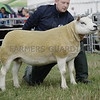Texel and Sheep Interbreed Champion at Turriff Show from Robbie Wilsion, North Dorlaithers, Turriff.