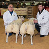 The champion pair of lambs, Dutch Texels from Robin J. Slade of Almeley, Hereford, Herefordshire.