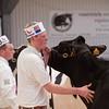 Holstein Show014