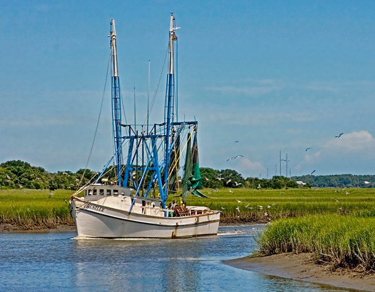"""The Hustler""<br /> Butches Creek<br /> St. Helena Island, SC"