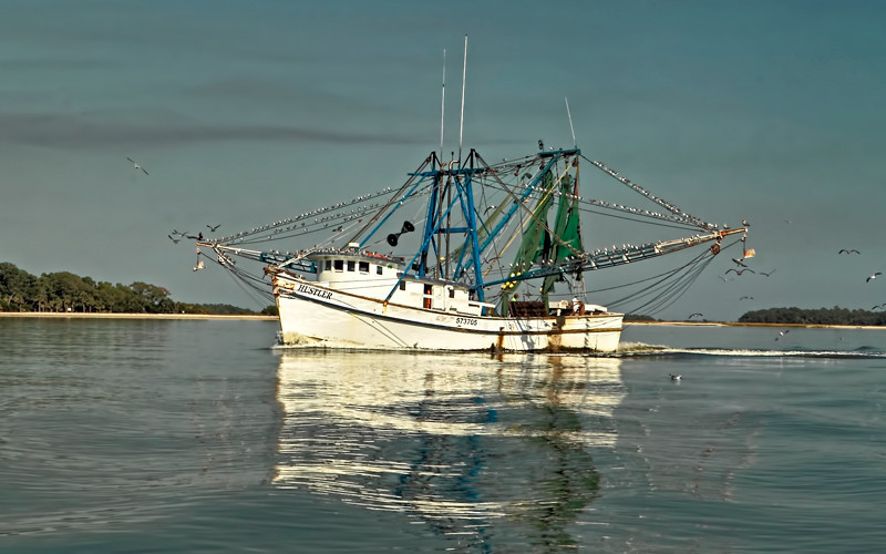"""The Hustler""<br /> Morgan River<br /> St. Helena Island, SC"