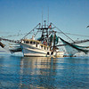 """The Miss Kathy""<br /> Morgan River<br /> St. Helena Island, SC"