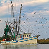 """The Jenny Adams""<br /> Coffin Creek<br /> St. Helena Island, SC"