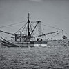 """The Four Girls""<br /> St. Helena Sound<br /> St. Helena Island, SC"