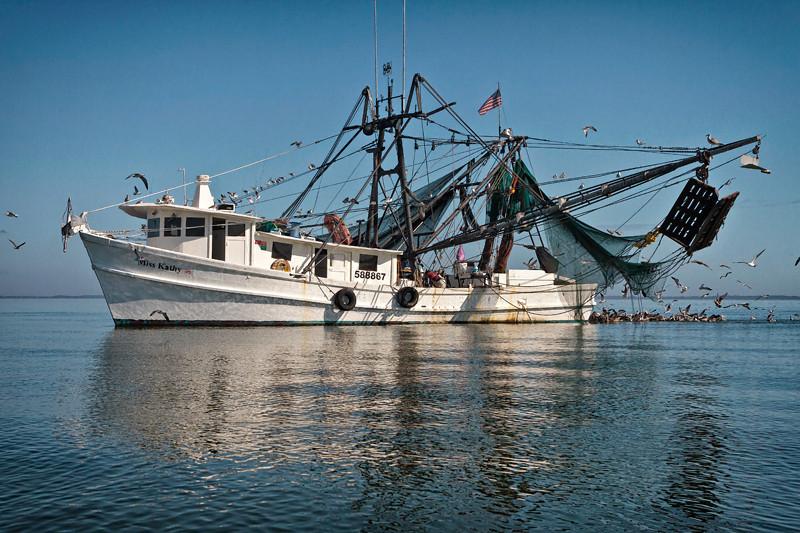 """Miss Kathy"" Pulling Nets<br /> St. Helena Sound<br /> St. Helena Island, SC"