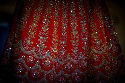 Shrunjal & Milan Wedding 0004