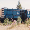 Another withdrawn shunter. 08438 in the weeds at March on 29th July 1990