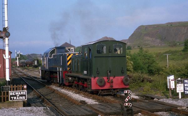 D2203 & Class 14 - D9513 at Embsey. 01.07.89