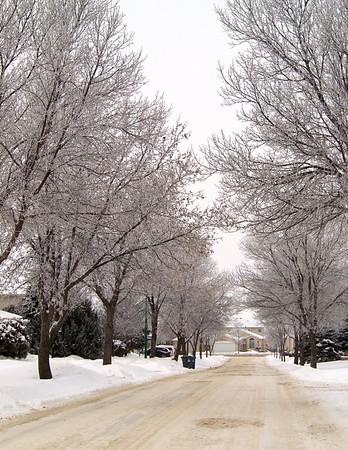 Frost Dec 2012