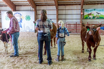 Sibley County 4-H Beef Show 2018