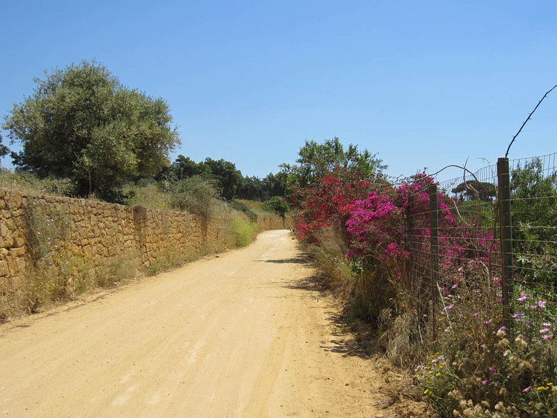 The road to Villa San Marco, Valle dei templi