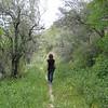 Trails behind Tenuta Gangivecchio