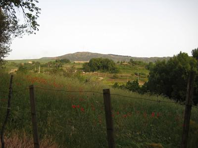 2008 - Gangivecchio