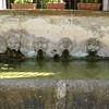 Water & gargoyles