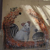 Dog graffiti, Vucciria
