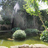Orto Botanico di Palermo, Kalsa quarter
