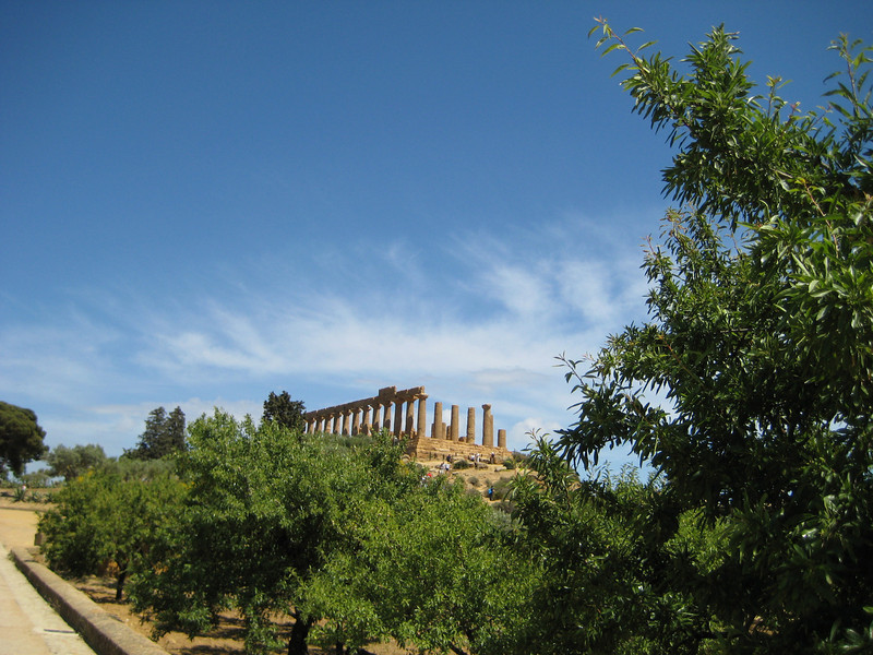 Temple of Hera from the west