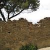 Gangi wall