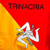 The colorful Trinacria emblem, which represents the island of Sicily.