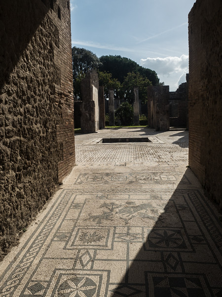 Mosaic Floor in Pompeii